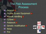 the risk assessment process11