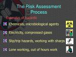 the risk assessment process3