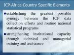 icp africa country specific elements