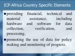 icp africa country specific elements1