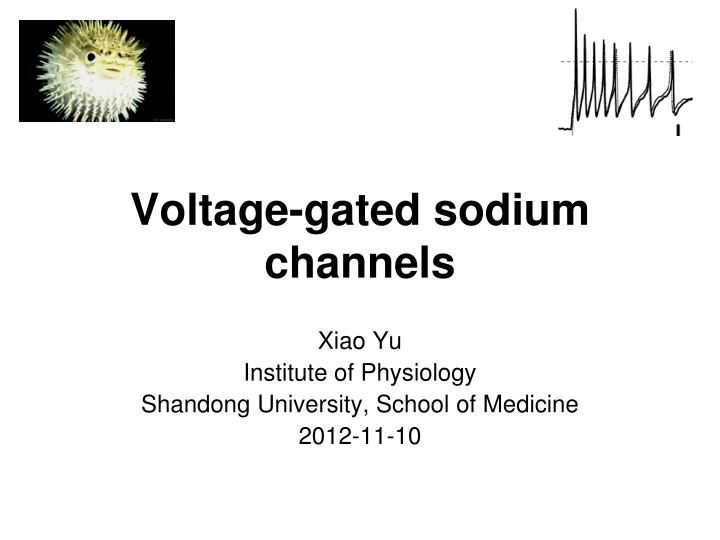 voltage gated sodium channels n.