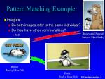 pattern matching example