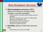 work breakdown structure1