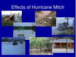 effects of hurricane mitch