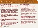 risks and challenges in using participatory approaches