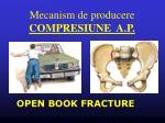 mecanism de producere compresiune a p