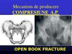 mecanism de producere compresiune a p1