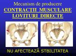 mecanism de producere contrac ii musculare lovituri directe