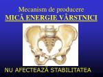 mecanism de producere mic energie v rstnici