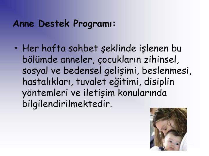 Anne Destek Programı: