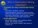 why is association mining important