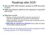 roadmap after dcr
