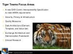 tiger teams focus areas