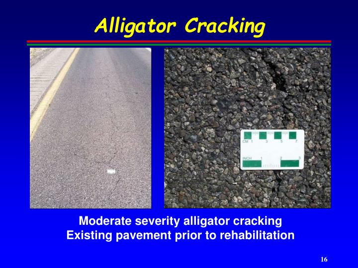 Alligator Cracking