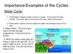 importance examples of the cycles