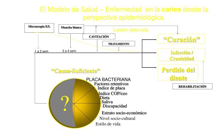 El Modelo de Salud – Enfermedad  en la