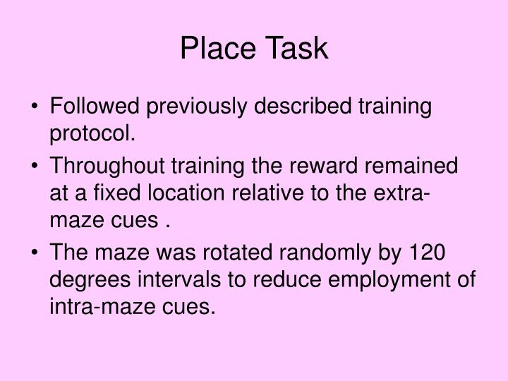 Place Task