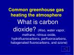 common greenhouse gas heating the atmosphere1
