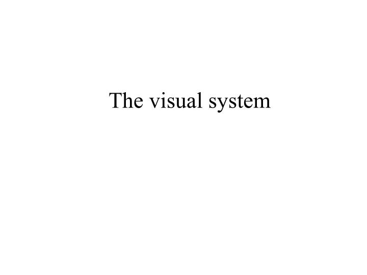 the visual system n.