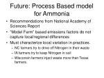 future process based model for ammonia