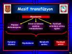 masif transf zyon2