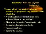 summary risk and capital budgeting