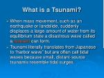 what is a tsunami