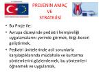 projen n ama ve stratej s