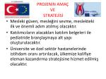 projen n ama ve stratej s3