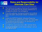 roles and responsibility for alternate care sites