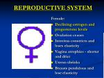 reproductive system1
