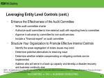 leveraging entity level controls cont