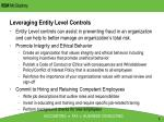 leveraging entity level controls