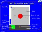 uxo remediation cassie