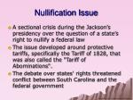 nullification issue