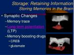 storage retaining information storing memories in the brain