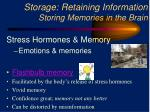 storage retaining information storing memories in the brain1