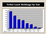 tribal land holdings by use
