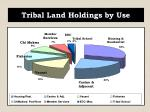 tribal land holdings by use1