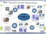 the acgt virtual organizations