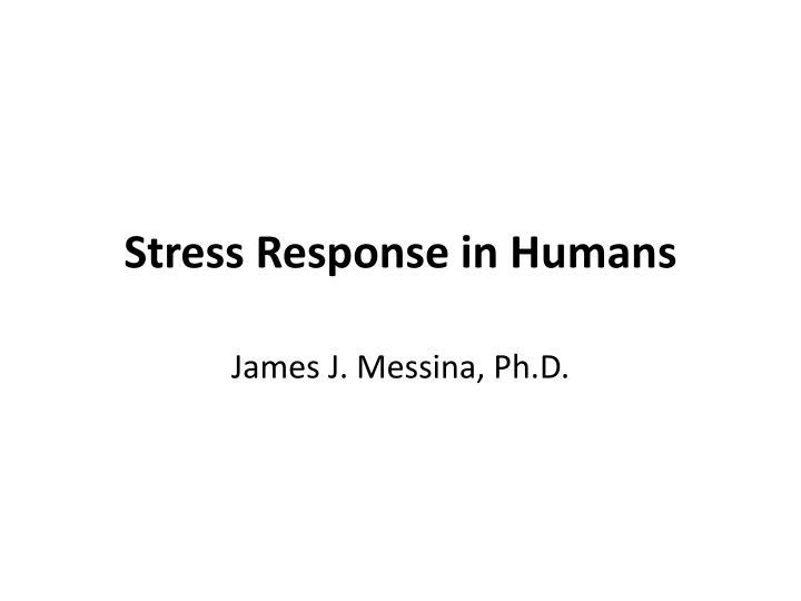 stress response in humans n.