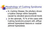morphology of cushing syndrome