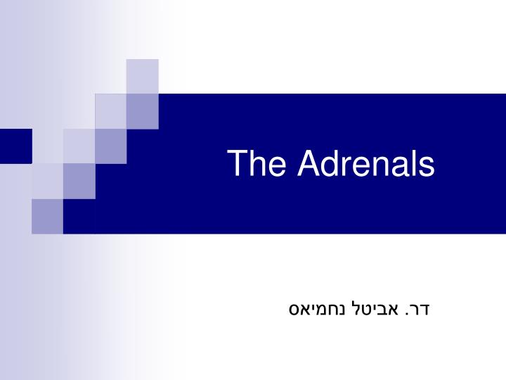 the adrenals n.