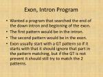 exon intron program