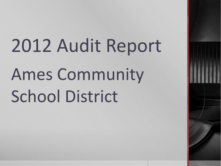 2012 audit report n.