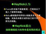 hayflick