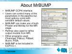 about mrbump1