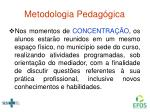 metodologia pedag gica