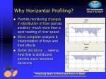 why horizontal profiling