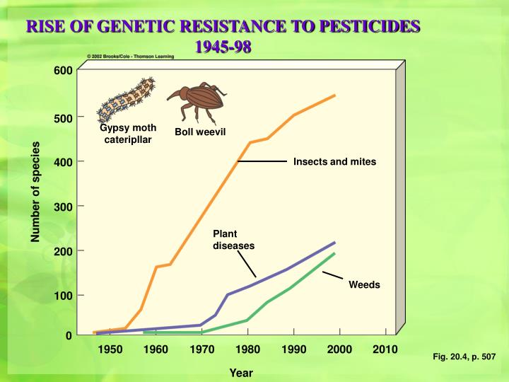 RISE OF GENETIC RESISTANCE TO PESTICIDES 1945-98